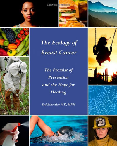The Ecology of Breast Cancer book cover