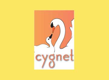 Cygnet with yellow background for website
